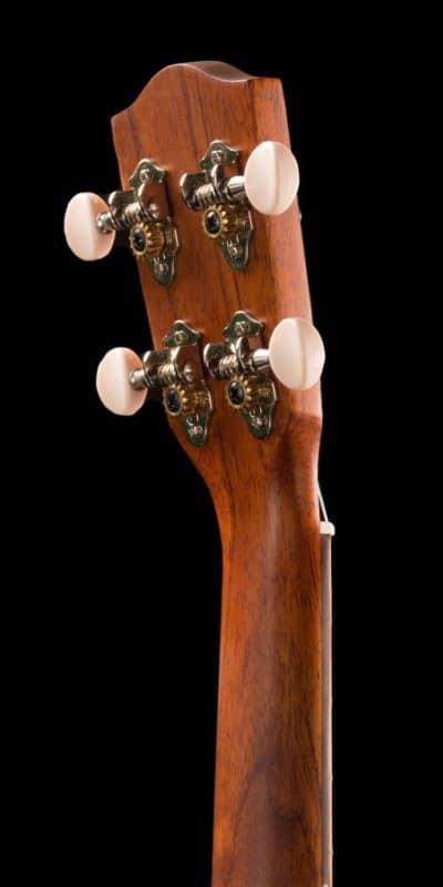 Ohana ukuleles all solid mahogany concert back headstock CK 25
