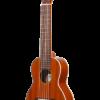 ohana tkgl-20 guitarlele